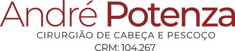 Logo Nova | André Protenza