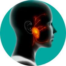 Cirurgia de Glândulas Salivares | Dr. André Potenza